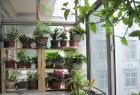 阳台变成小花园?阳台装修注意事项