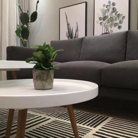 簡約風格小戶型客廳沙發背景墻