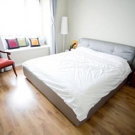 欧式时尚二居室室内设计