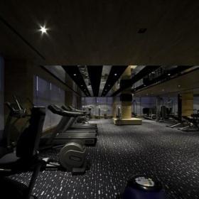 室內豪華健身房