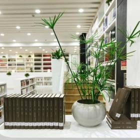 图书馆隔断设计
