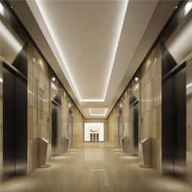 木门混搭写字楼标准层电梯间效果图