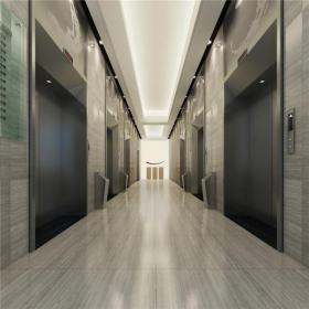 木门混搭写字楼大堂电梯间效果图
