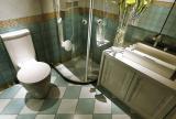 新古典风格卫生间淋浴房装修效果图新古典风格淋浴房图片
