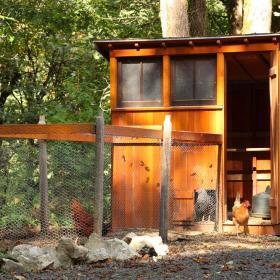 木結構健身房