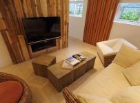 二居室混搭风格公寓富裕型客厅电视背景墙沙发台湾家居效果图