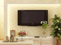 白色80㎡背景墻田園韓式二居客廳客廳背景墻有愛的電視背景墻設計效果圖欣賞