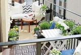 绿色室内植物清新绿植阳台圆你田园梦效果图