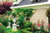 欧式复式楼入户花园绿色花园装修设计人工与自然的完美结合效果图欣赏