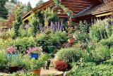 大户型入户花园盆栽绿色花园的魅力无法抵挡效果图大全