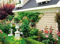 歐式復式樓入戶花園綠色花園裝修設計人工與自然的完美結合效果圖欣賞