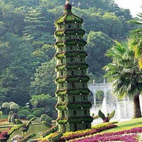 入戶花園綠色花園裝修設計的藝術之美效果圖欣賞
