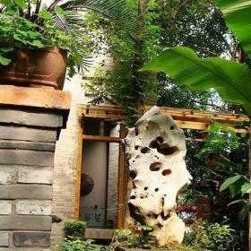 """中式入戶花園綠色花園裝修效果圖陽光中的一片""""綠海"""