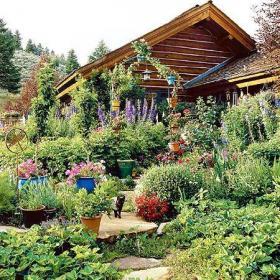 大戶型入戶花園盆栽綠色花園的魅力無法抵擋效果圖大全