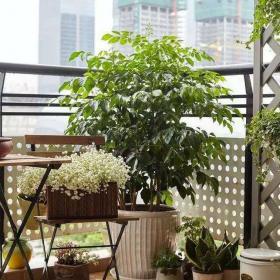 澜泊湾130平米现代风格之阳台布置效果图